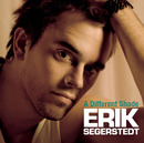 A Different Shade/Erik Segerstedt