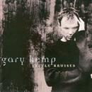 Little Bruises/Gary Kemp