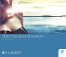 Do It Now/Dubtribe Sound System