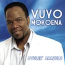 Avulek' Amazulu/Vuyo Mokoena