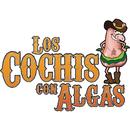 El Ochito/Los Cochis Con Algas