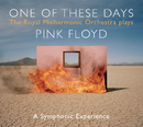 The Royal Philharmonic Orchestra  Plays Pink Floyd/One Of These Days/David Palmer