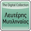 The Digital Collection/Lefteris Mitilineos