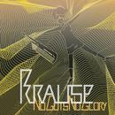 No Guts, No Glory (Radio Edit)/Krause