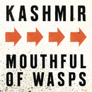Mouthfull Of Wasps/Kashmir