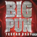 Yeah Baby/Big Pun