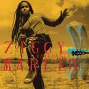 Dragonfly/Ziggy Marley