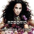 Muchas Flores/Rosario