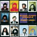 Fuzzy Logic/Super Furry Animals