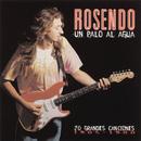 Un Palo Al Agua (20 Grandes Canciones)/Rosendo