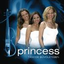 Táncok Büvöletében/Princess