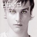 Wild At Heart/David