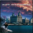 Like You Do - Best of the Lightning Seeds/The Lightning Seeds