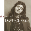 Best Of David Essex/David Essex