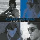 Greatest Hits/Albert Hammond