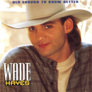 Old Enough To Know Better/Wade Hayes