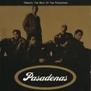 Tribute: The Best Of The Pasadenas/The Pasadenas