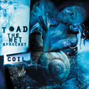 COIL/Toad The Wet Sprocket