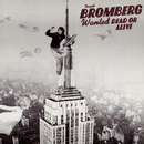 Wanted Dead Or Alive/David Bromberg