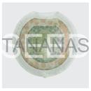 Seed/Tananas