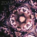 Is Everybody Listening?/ZOAX