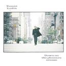 Down On The Pleasure Avenue/Tomas Ledin