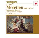 Bach: Motets BWV 225-229/Frieder Bernius
