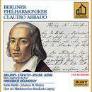 Brahms & Strauss & Reger & Rihm: Music Inspired by the Poet Friedrich Hölderlin/Claudio Abbado