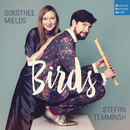Birds/Stefan Temmingh