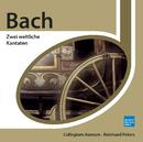 Bach: Zwei weltliche Kantaten/Collegium Aureum