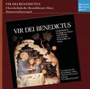 Vir Dei Benedictus/Godehard Joppich