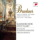 Bruckner: Mass in E Minor; Motets/Frieder Bernius