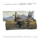 Torso/Rundfunk-Sinfonieorchester Berlin, Peter Hirsch