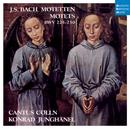 Bach Motets/Cantus Cölln
