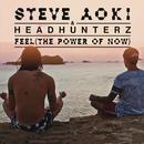 Feel (The Power Of Now)/Steve Aoki & Headhunterz