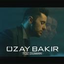 Toz Duman/Ozay Bakir