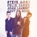 Can't Go Home (Radio Edit) feat.Adam Lambert/Steve Aoki