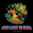 Blows Against The Empire/Paul Kantner/Jefferson Starship
