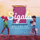 Say You Do (Radio Edit) feat.Imani Williams & DJ Fresh/Sigala