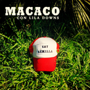 Semillas/Macaco con Lila Downs