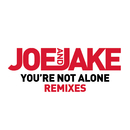 You're Not Alone (Cahill Club Mix)/Joe and Jake