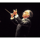 Sibelius: Symphonies Nos. 2 & 6/Lorin Maazel