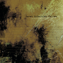 Fallen (Album Mix)/Sarah McLachlan