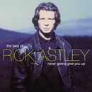 The Best Of/Rick Astley