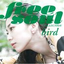 Free Soul Collection/bird
