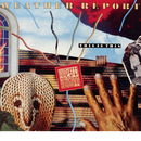 Weather Report - This is this/Weather Report