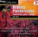 Brahms & Mendelssohn: Violin Concertos/Isaac Stern