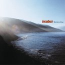 Morning View/Incubus