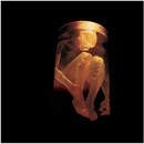 Nothing Safe - The Best Of The Box/Alice In Chains