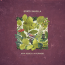 Non riesco a dormire/Boris Ramella